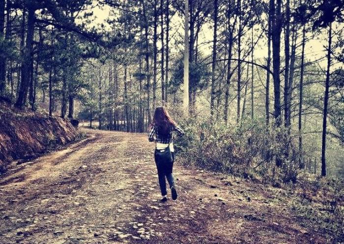 forest_run